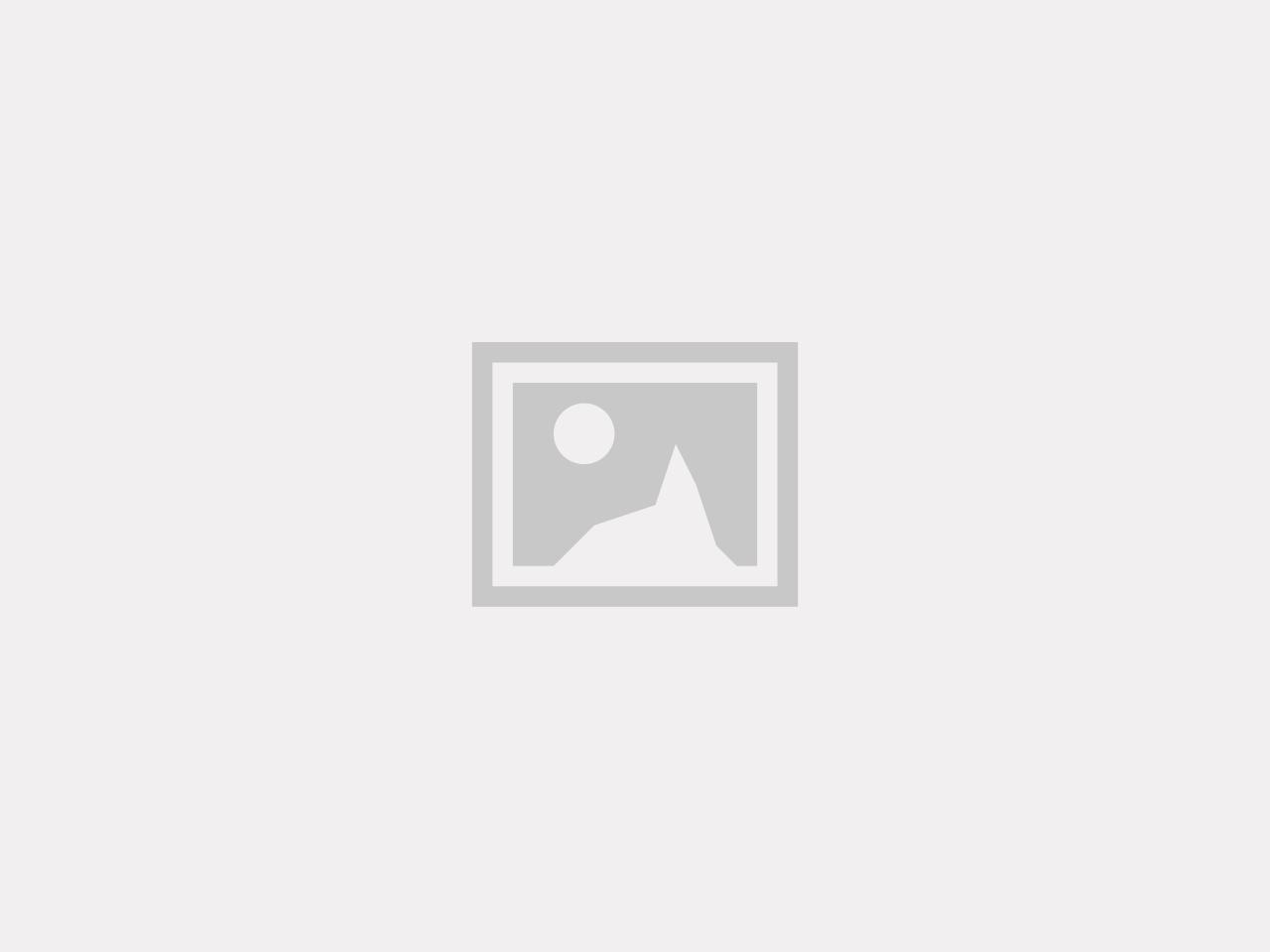 Snörledare Brun (M02)